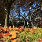 Saukalt auf dem Fahrrad …