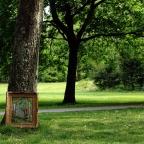 Die Kunst der Bäume